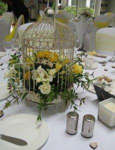 Bird cage Ian & Rachel