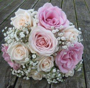 Rose & gyp b't 2